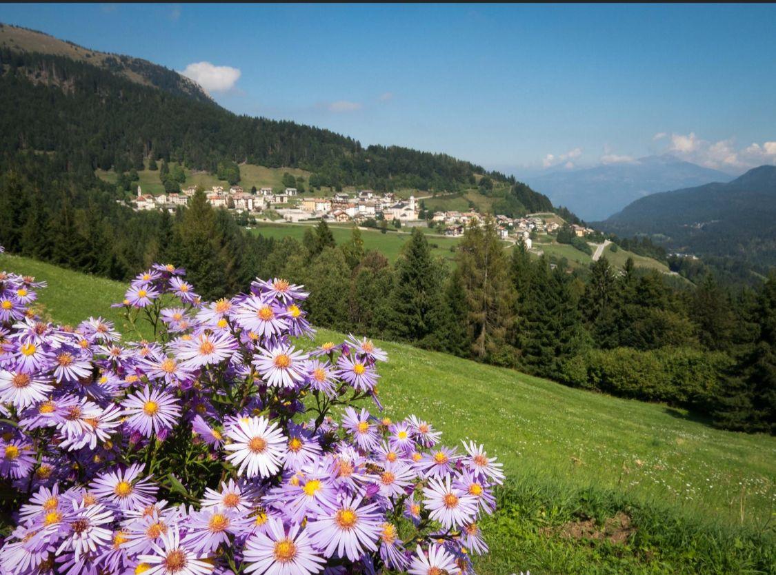 San-Sebastiano-la-natura-e-il-mio-tempio-associazione-armonia
